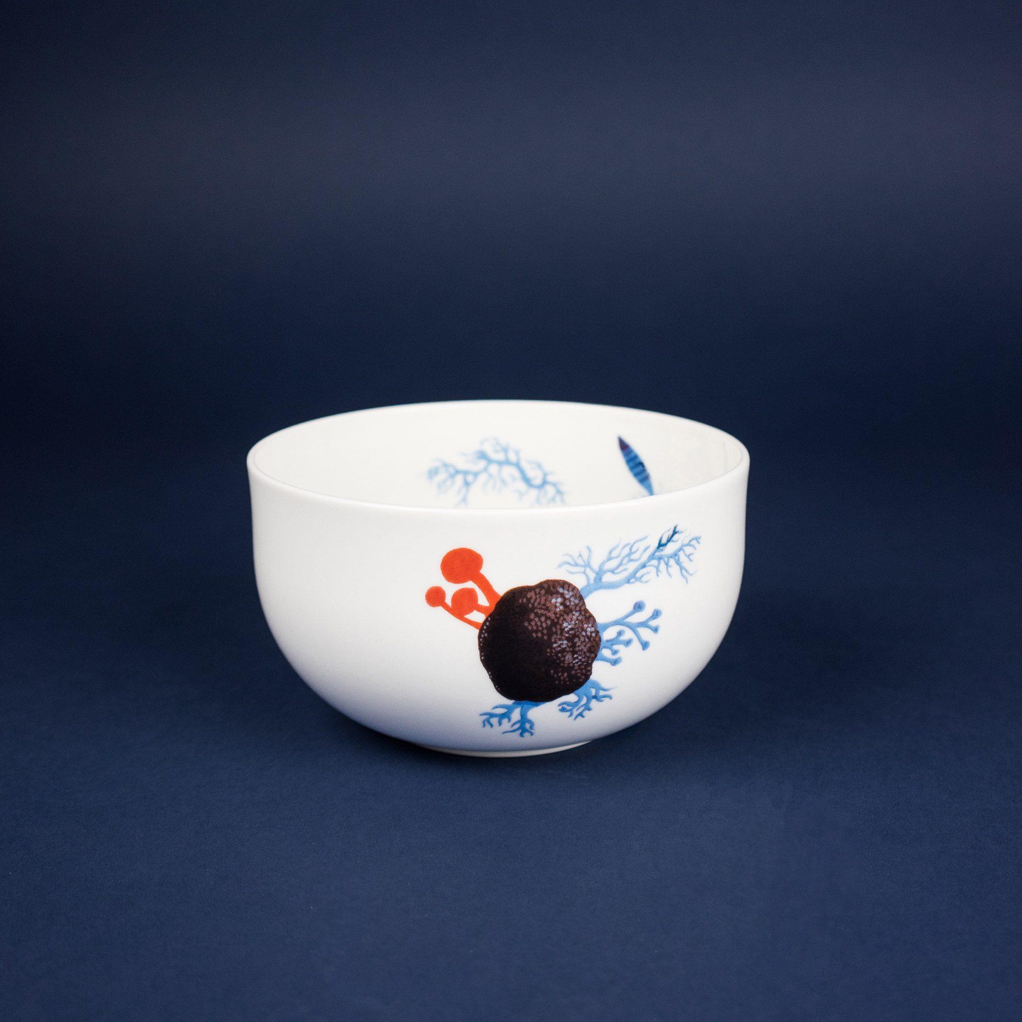 Porcelain bowl with flower illustration by Krehky