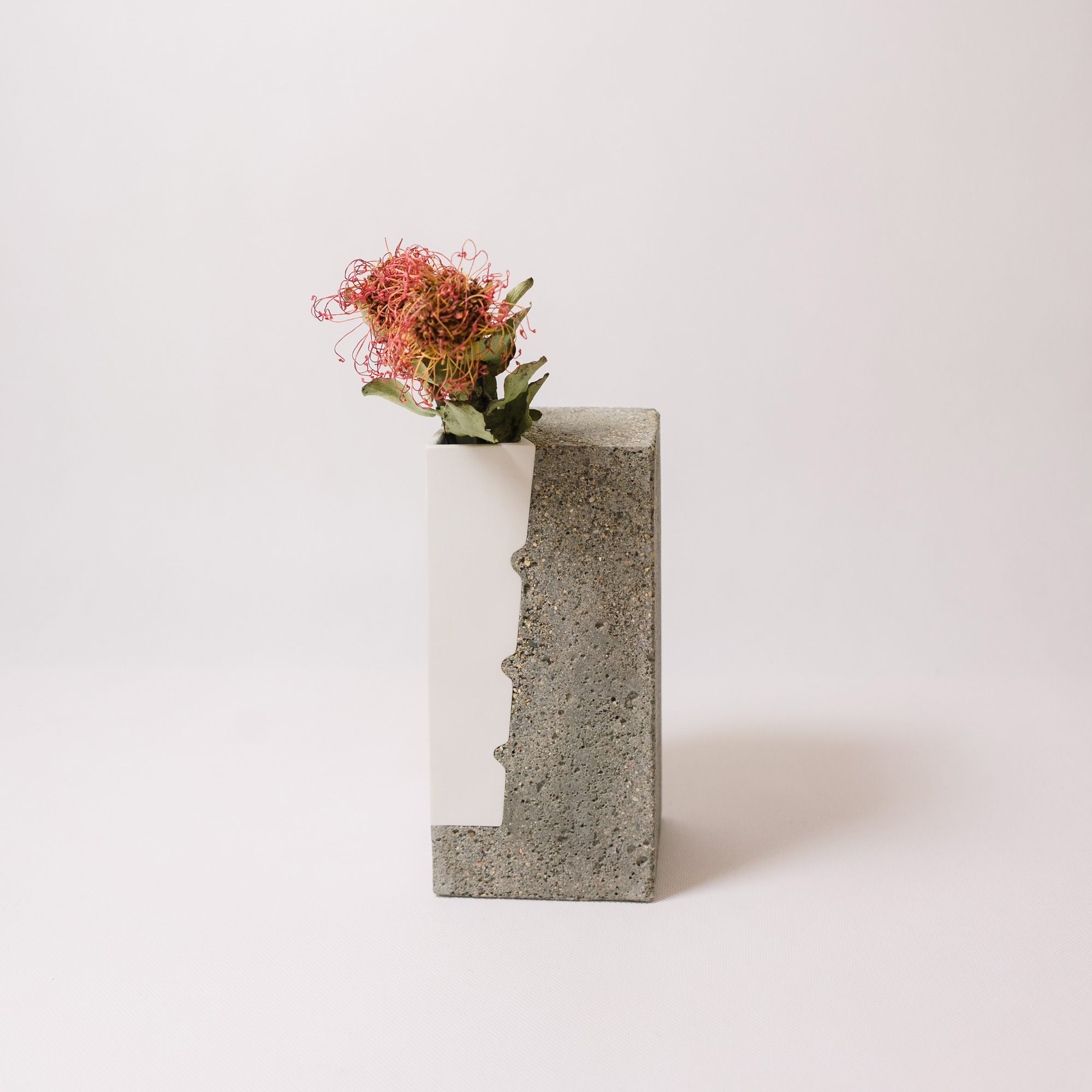 White porcelain vase encapsulated in concrete by Vobouch designers with red dry flowers 03